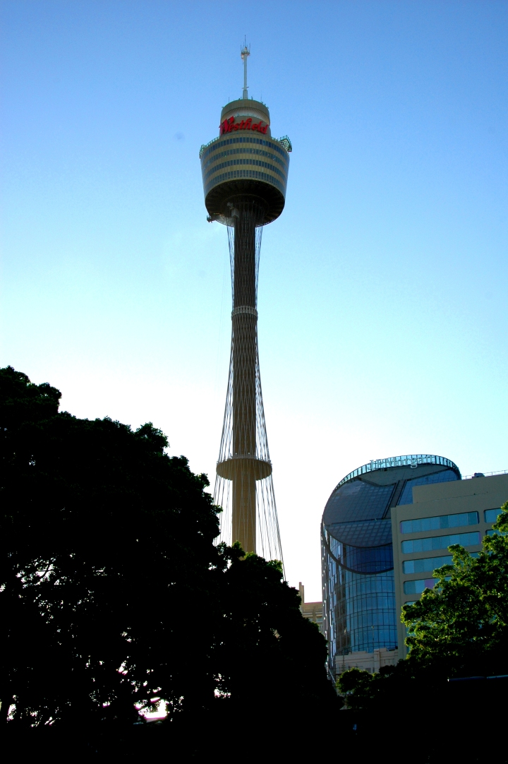 10 Awesome Things to Do in Sydney, Australia - Sydney Tower